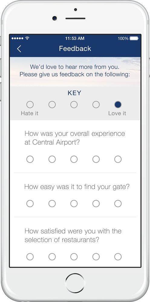 airport-feature-survey